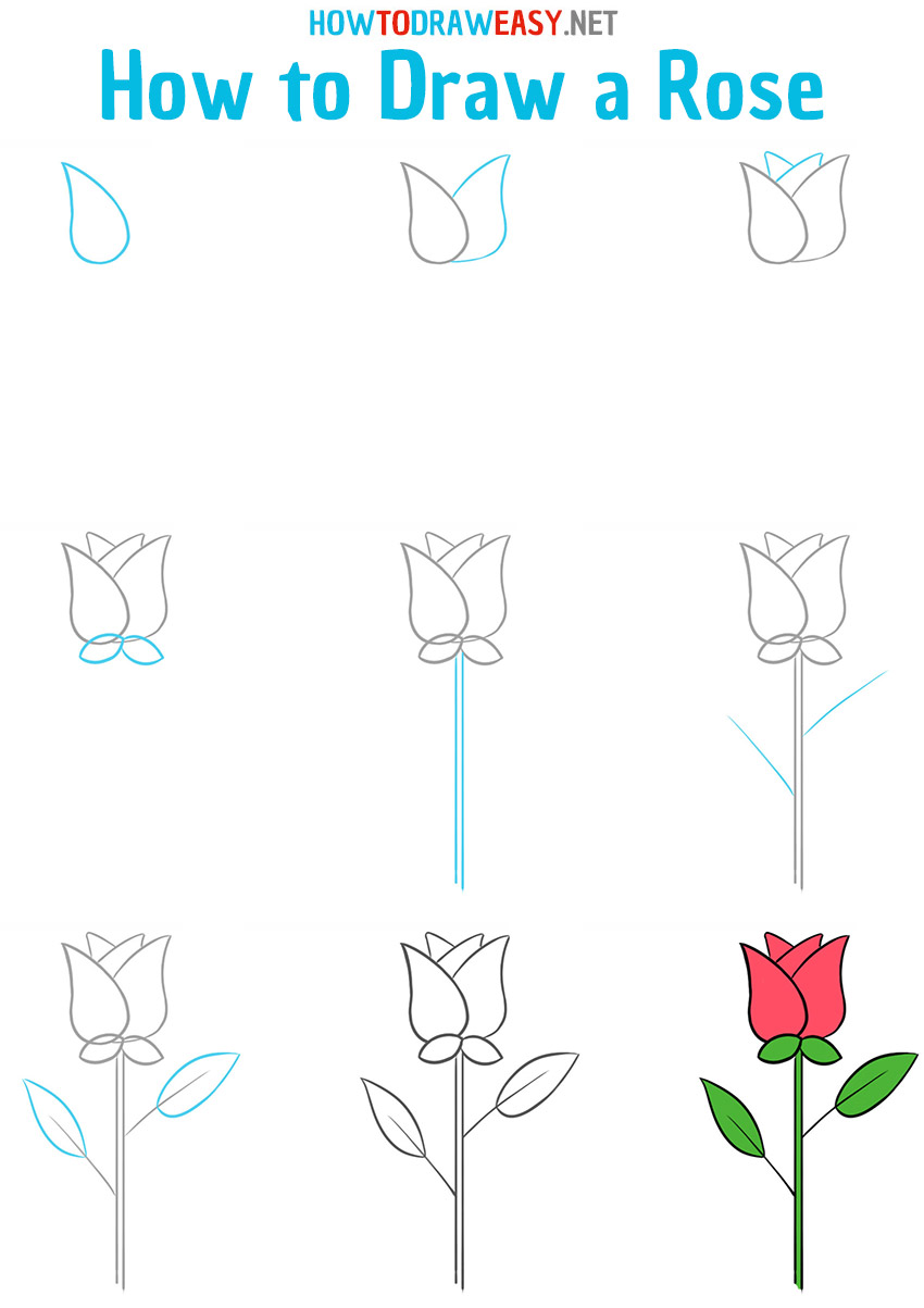 How to draw a rose - step by step drawing lesson