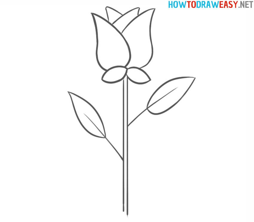 rose drawing tutorial
