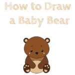 How to Draw a Baby Bear