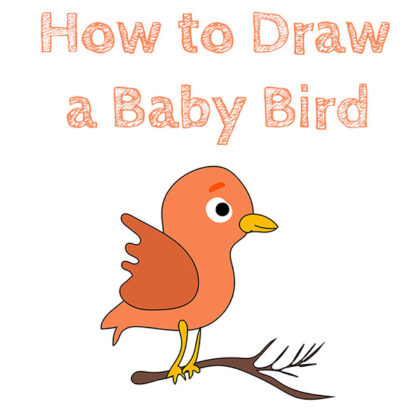how-to-draw-a-baby-bird