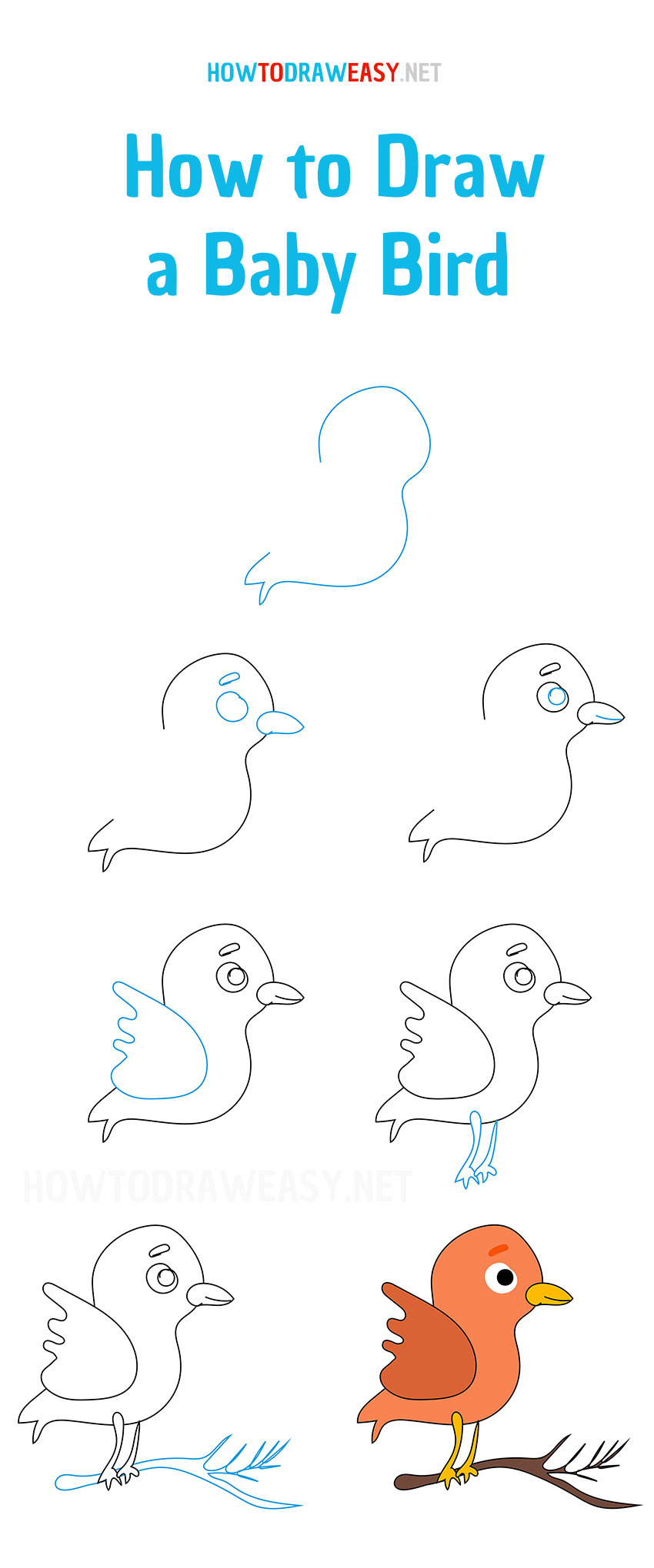 how-to-draw-a-baby-bird-easy
