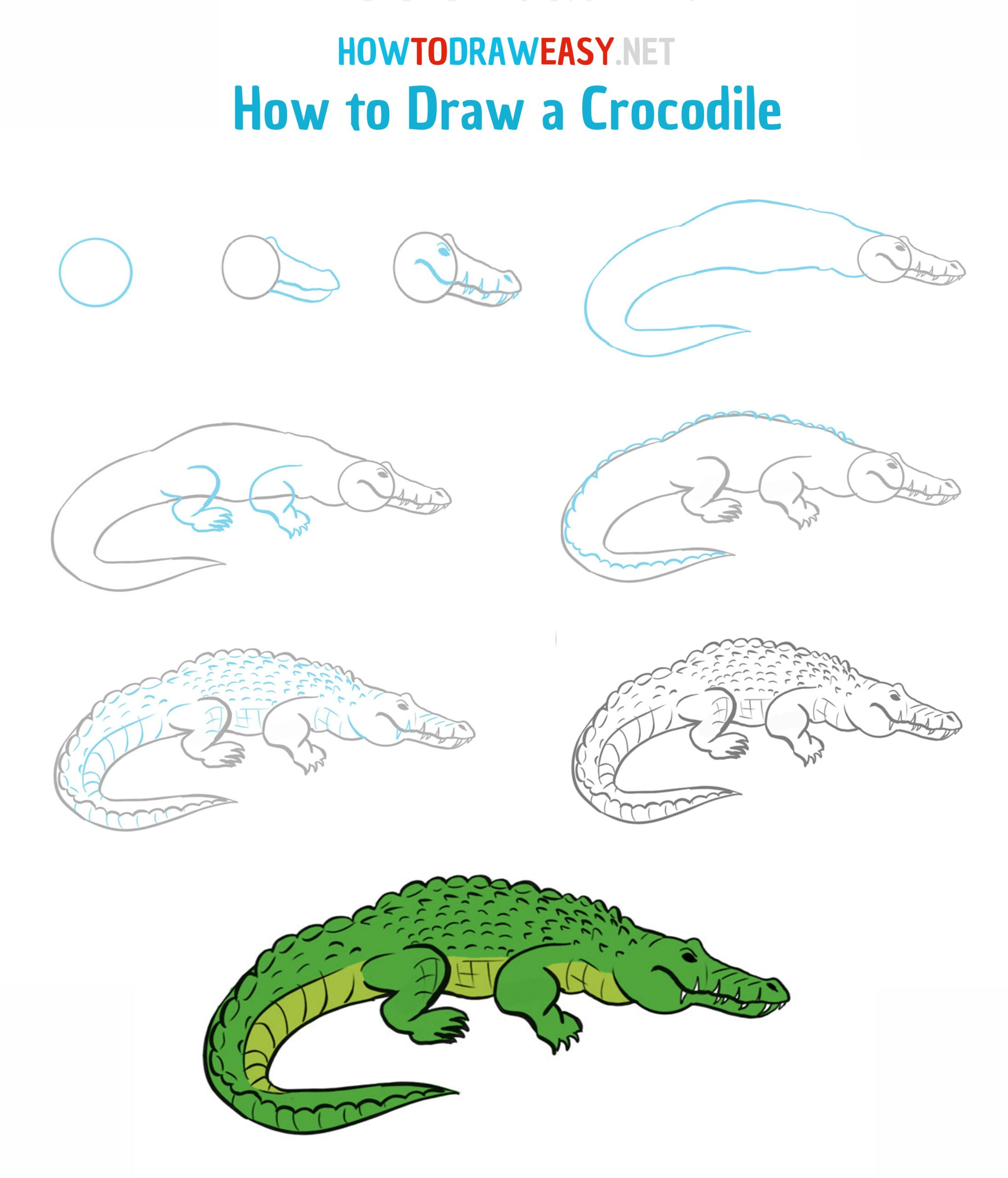 How to Draw a Crocodile   How to Draw Easy
