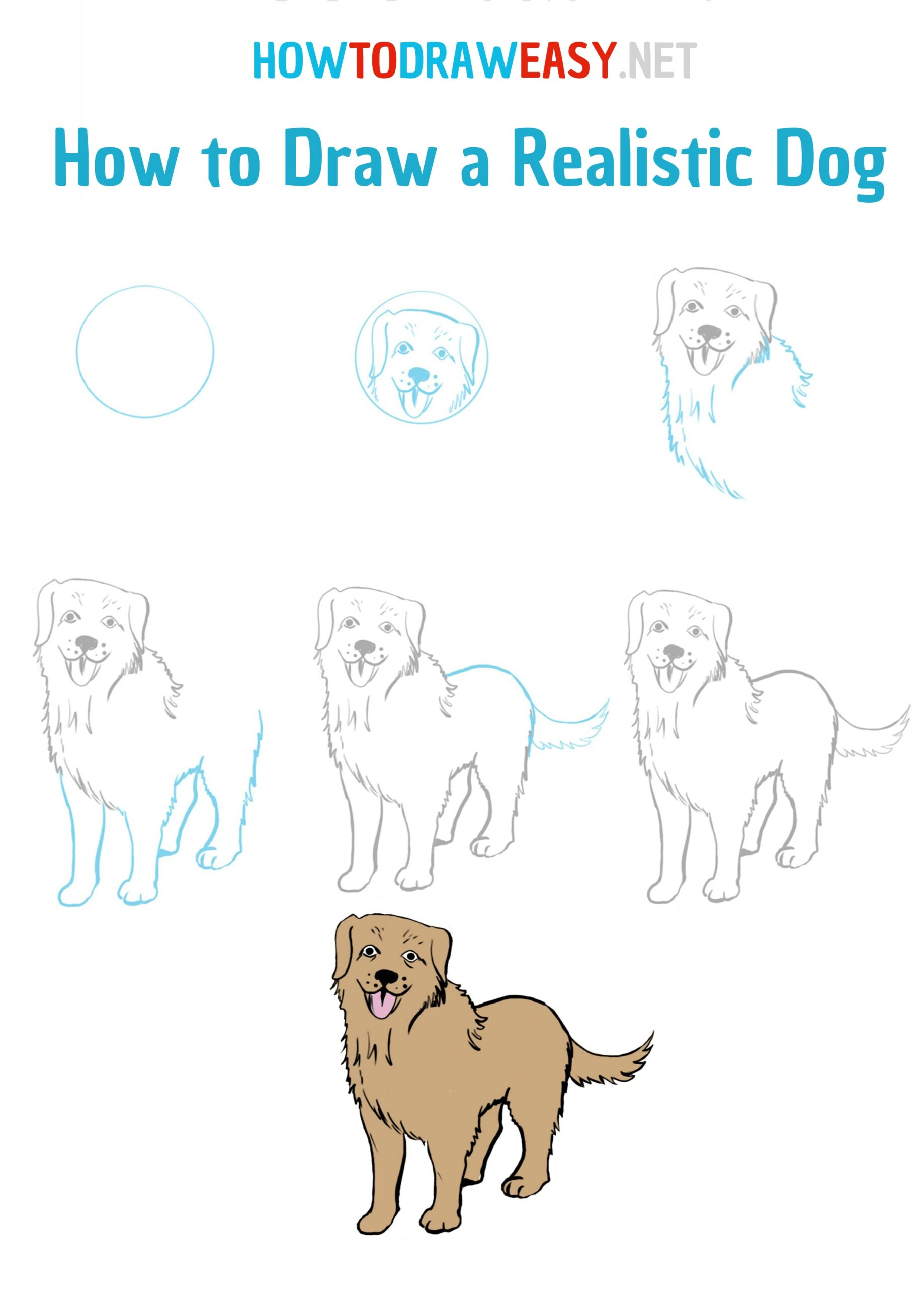 How to Draw a Realistic Dog   How to Draw Easy