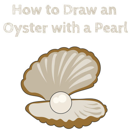 how-to-draw-an-oyster-with-a-pearl-drawing-tutorial