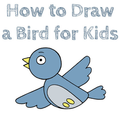 How to draw a bird for beginners