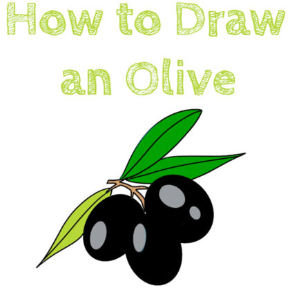 how to draw a olive