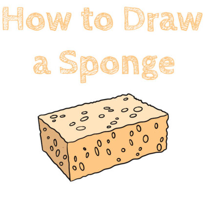 how to draw a sponge for beginners