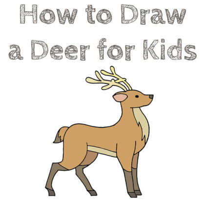 How to Draw a Easy Deer