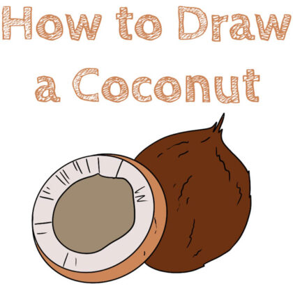 how-to-draw-coconut