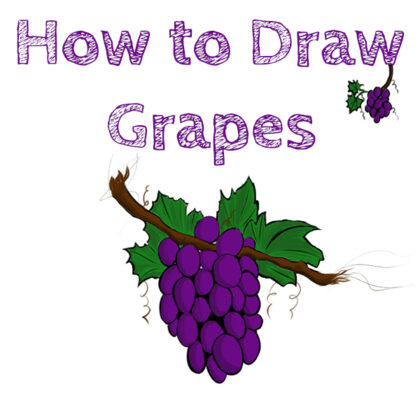 Grapes How to Draw Easy
