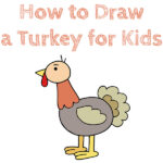 How to Draw a Turkey for Kids