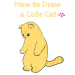 How to Draw a Cute Cat