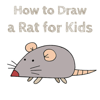 How to Draw a Rat for Kids Easy