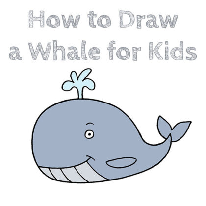 How to Draw a Whale for Beginners