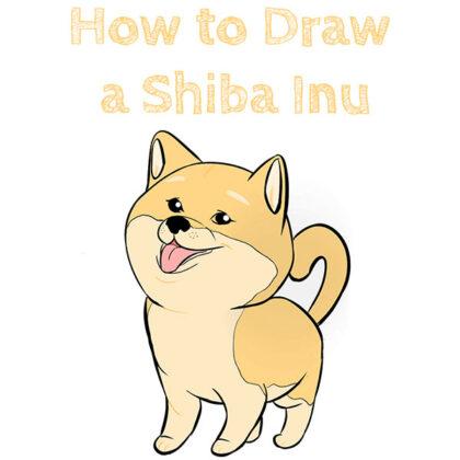 Shiba Inu Dog How to Draw