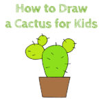 How to Draw a Cactus for Kids