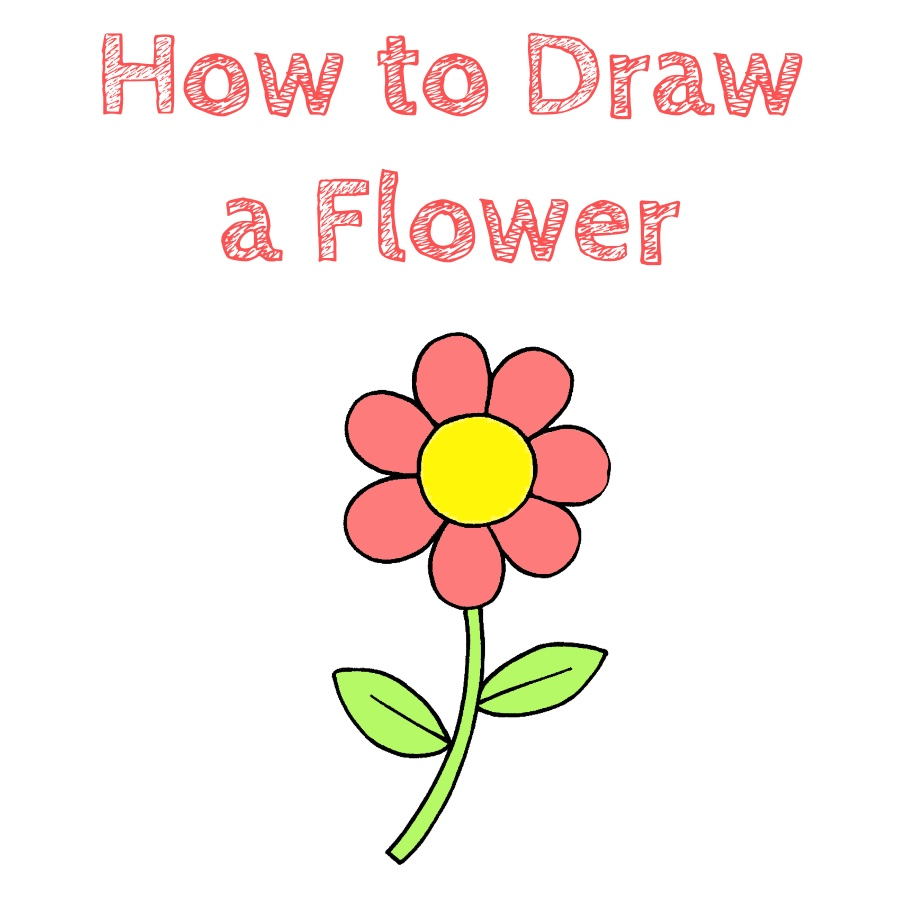 How to Draw a Flower for Kids   How to Draw Easy