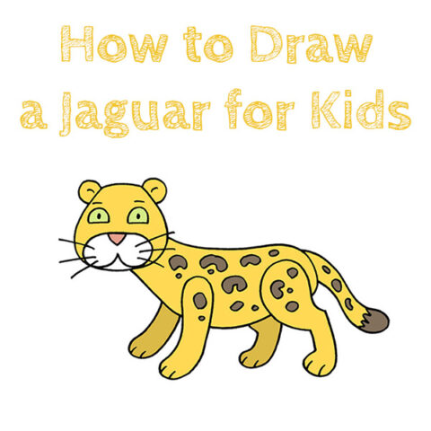 How to Draw a Jaguar Easy