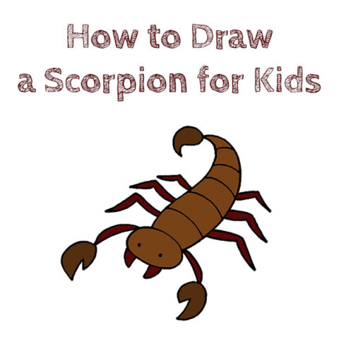 how to draw a scorpion simple