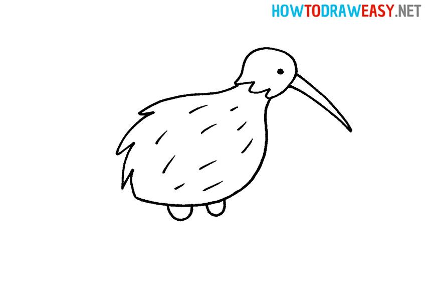 How to Draw a Bird Kiwi
