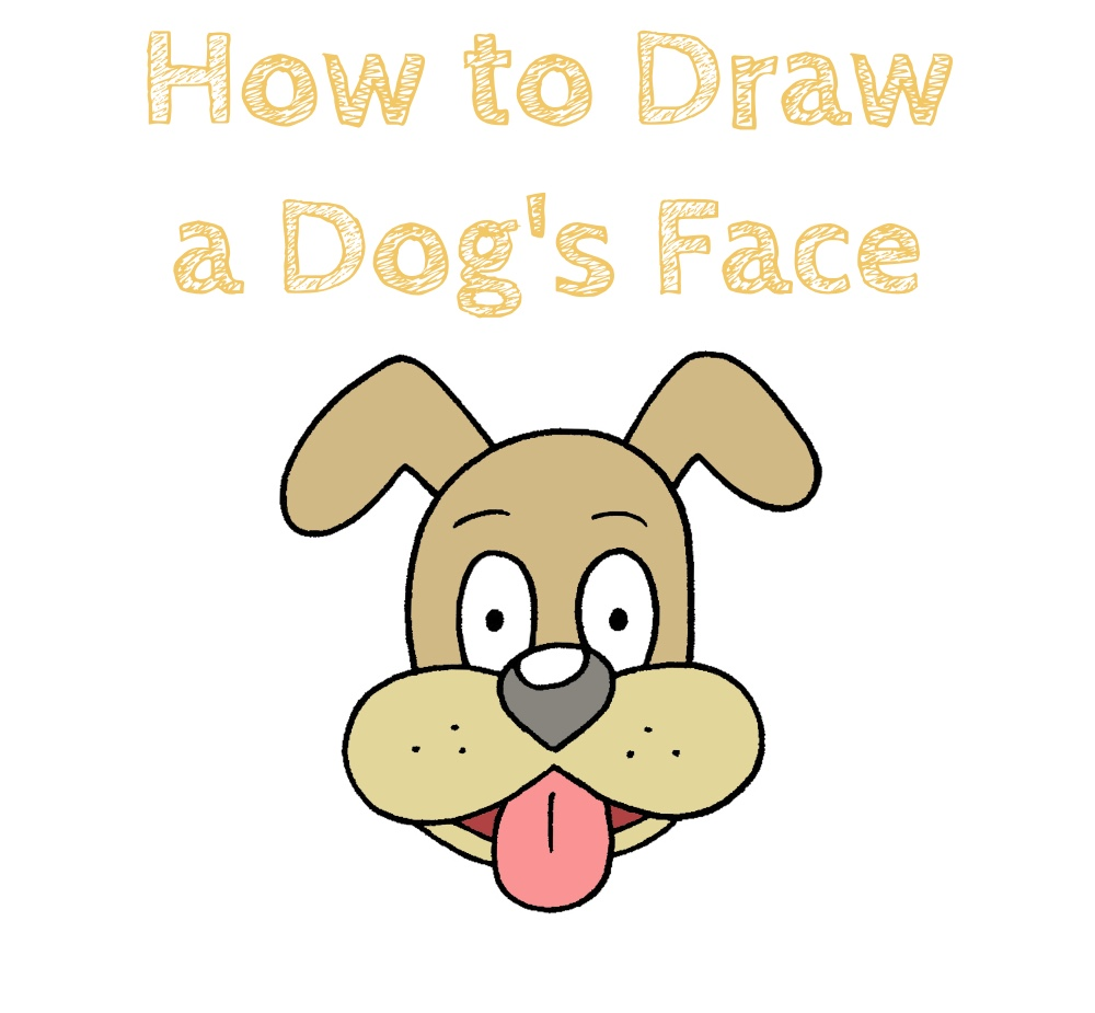 How to Draw a Dog's Face