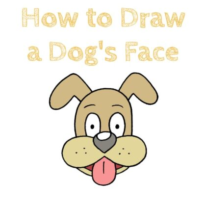 face how to draw a dog